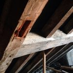 rafters detail