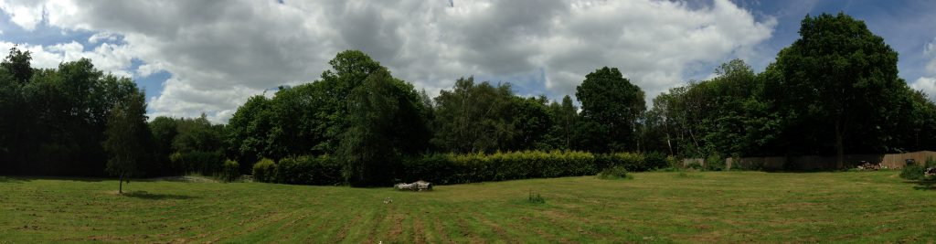 Panorama Of Site